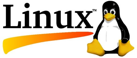 Vacature Linux System Engineer: Logo Linux
