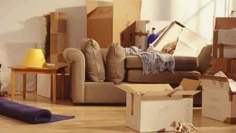 Verhuizen domeinnaam: je website meeverhuizen