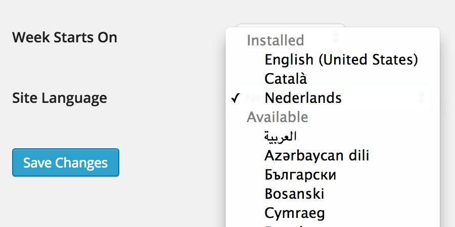 WordPress taal wijzigen: Site Language