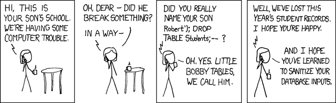 Lek in WP Super Cache: XKCD