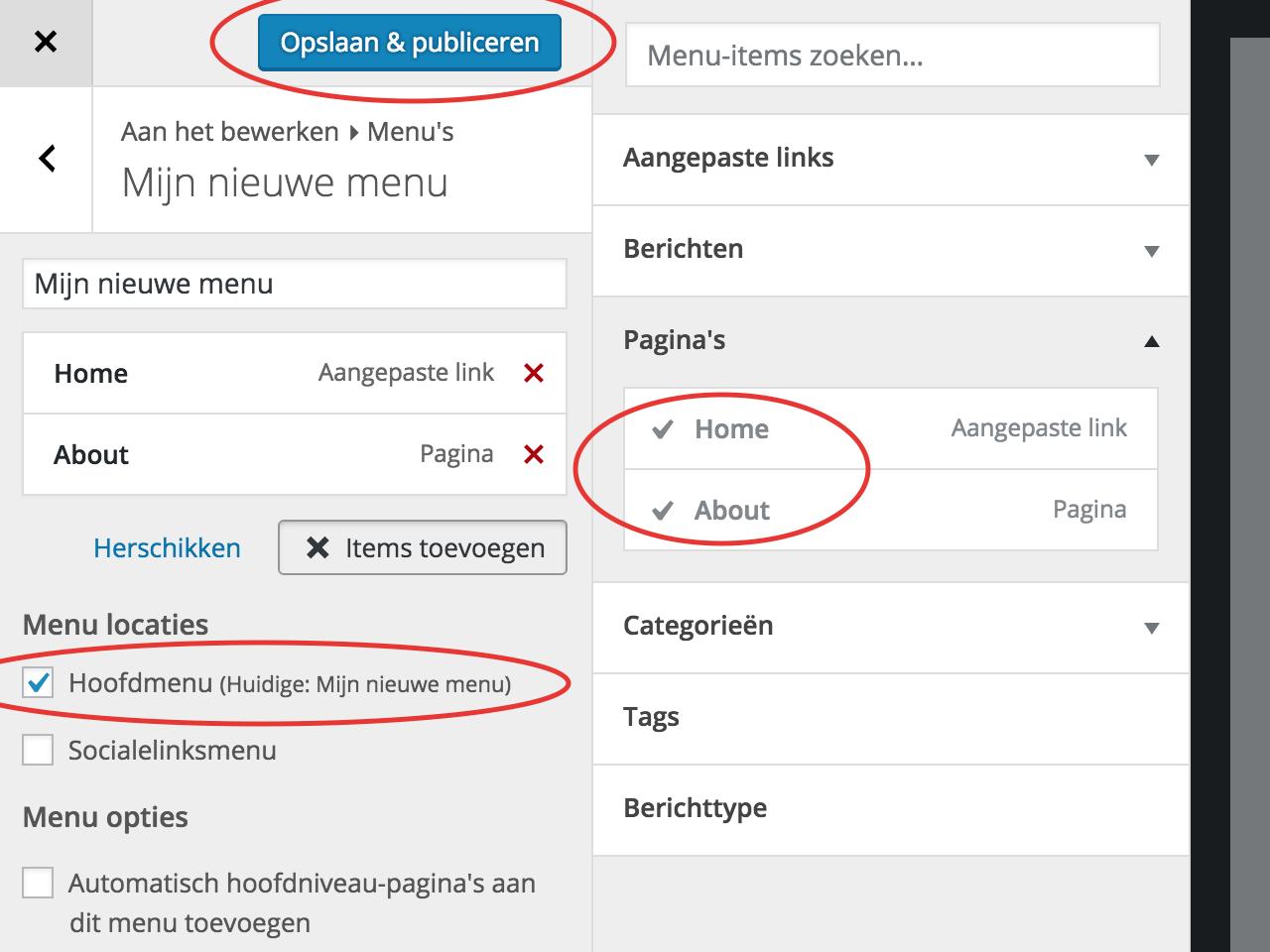 WordPress, het complete stappenplan: een menu aanmaken in WordPress