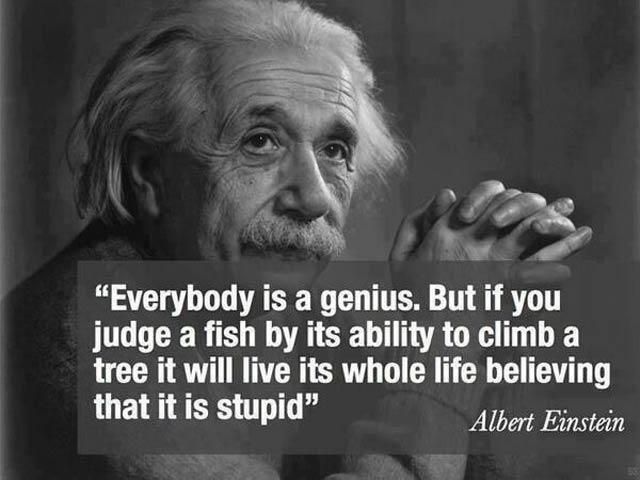 Werken bij Antagonist: de quote van Einstein