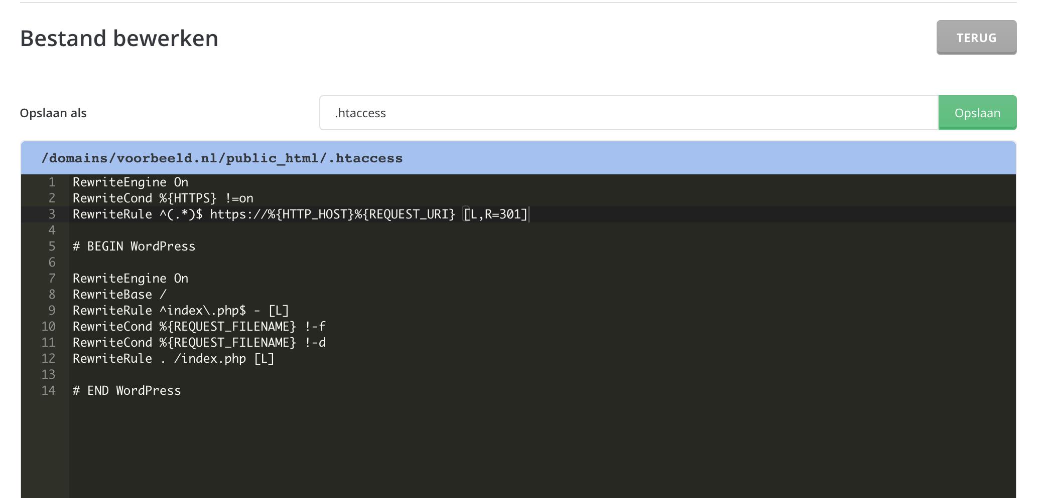 HTTP naar HTTPS doorsturen via het .htaccess-bestand.