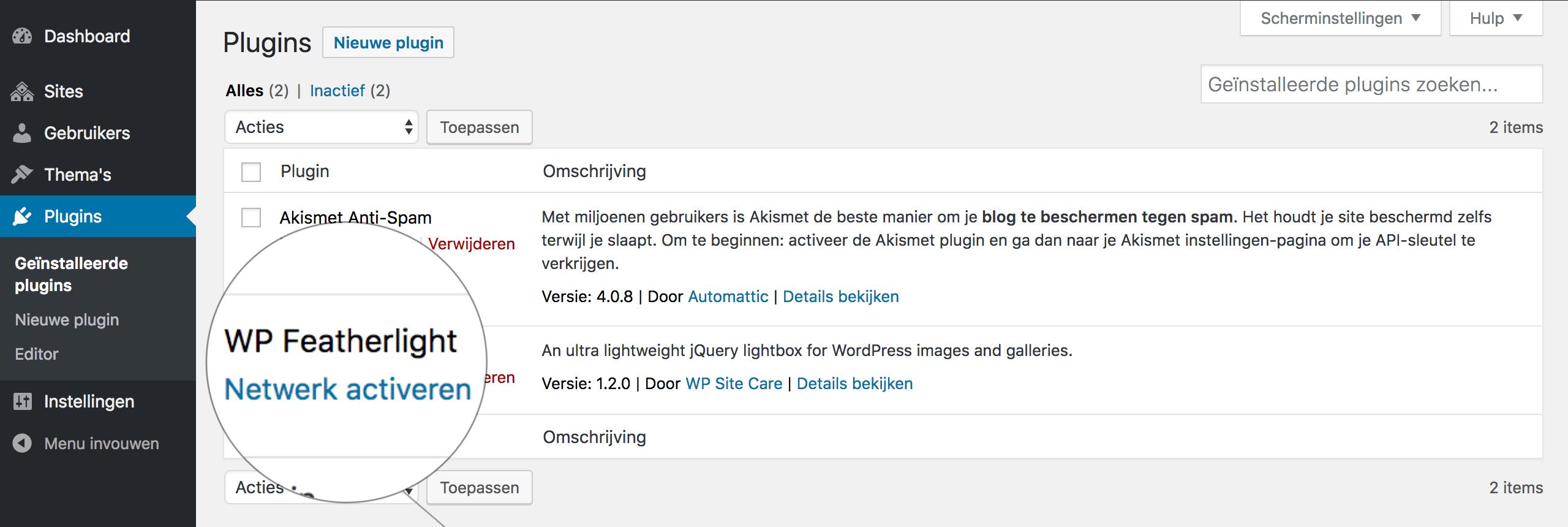 WordPress Multisite: plugins activeren voor het gehele netwerk.