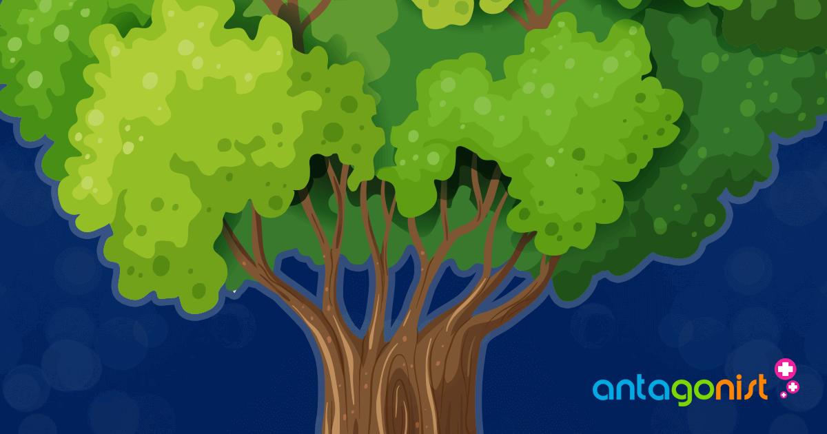 Hoe branches in Git werken.