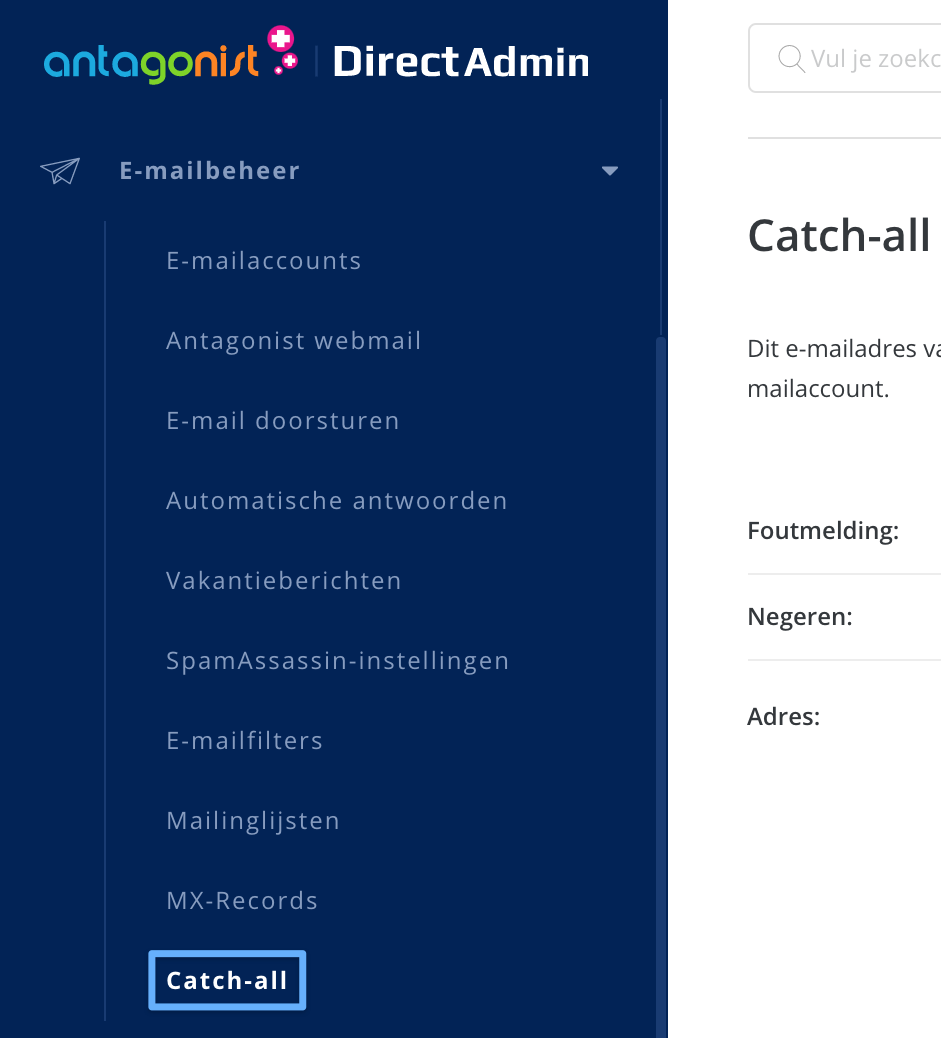 De optie 'Catch-all' in DirectAdmin.
