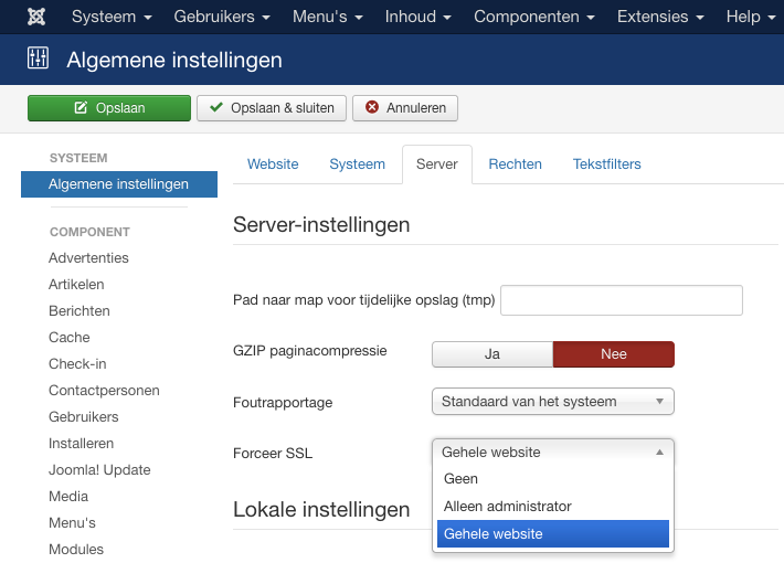 nl:ssl:joomla_https_server_settings.png
