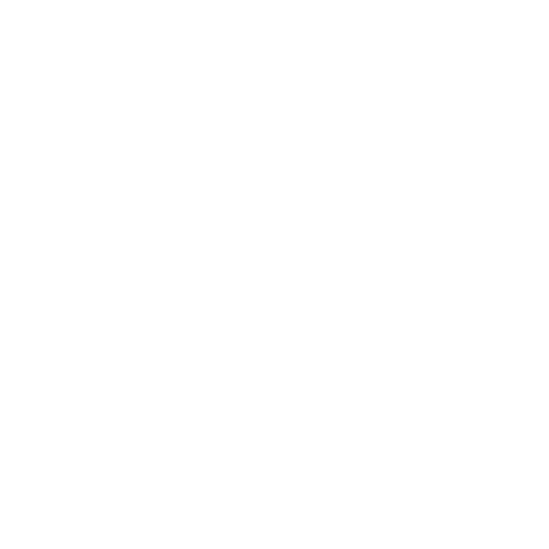 Wit Wordpress logo